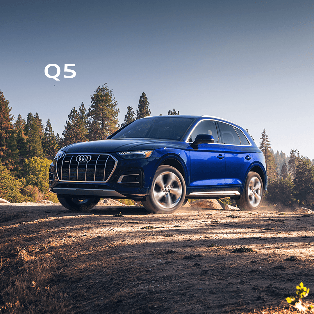 The Fall for Audi Event – Q5